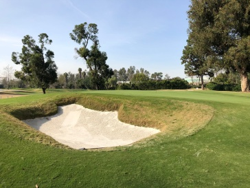 11th greenside bunker.