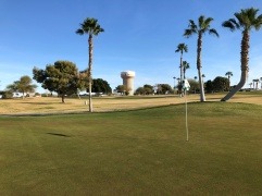 12th green with Yuma water tower in background.