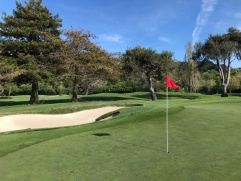 Close-up view of 15th green.