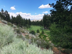 Different view of 17th from halfway down the hill.