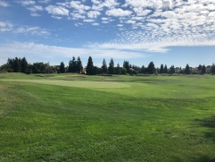 Side view of 13th green with 14th in the background.