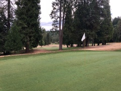 Side view of the 5th green.