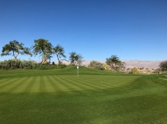 Close view of 10th green.