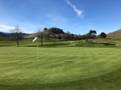 Side view of 7th green with 6th green in background.